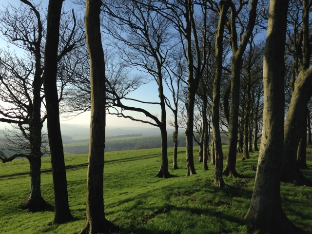 looking south west  from Chanctonbury Ring