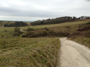 The path round the southern face of Cissbury Ring